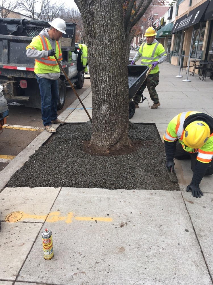 Workers install Flexi-Pave at experimental tree well on South Street. Photo courtesy of Morristown Shade Tree Commission