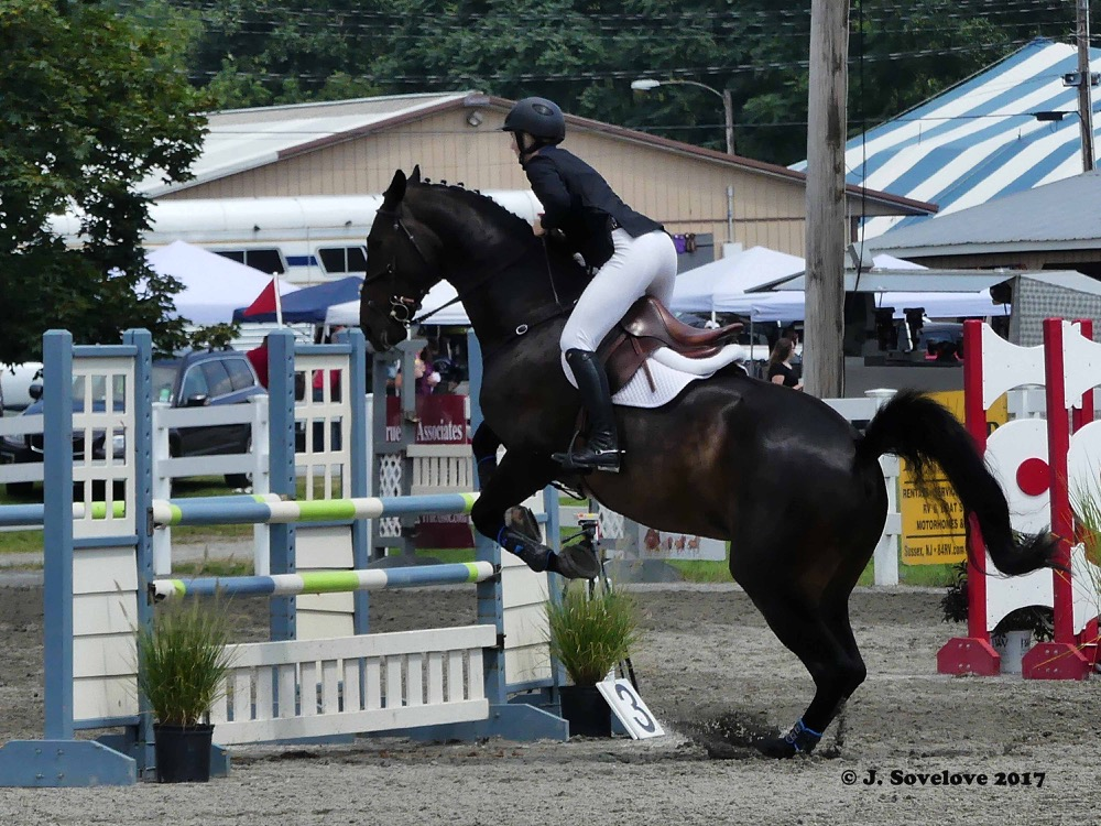Show jumping, NJ State Fair in Sussex County, August 2017. Photo by Jeff Sovelove